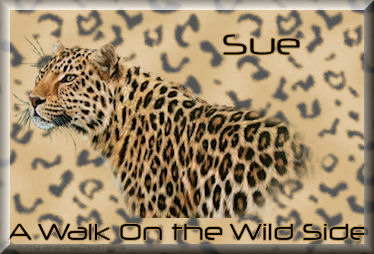 wild side quick tagtjcsue.jpg