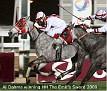 AL DAHMA (Amer x Al Hanoof, by Manganate) 2002 grey mare International Race winner