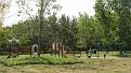 Детская площадка у озера