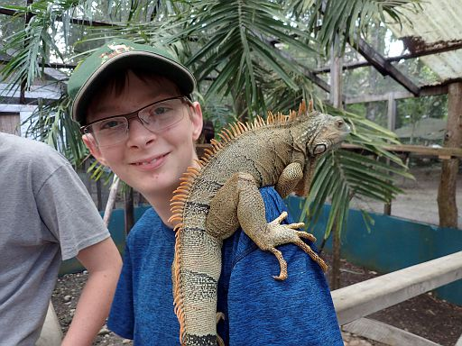 at the Green Iguana Conservation Project
