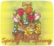Dad-gailz-bunnies and tulips