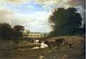 Cattle Grazing [1884]