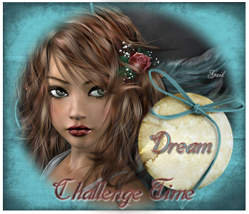 Challenge Time-gailz-Sorensen Designs Mist Feb 266-10