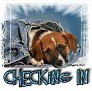 1Checking In-blujeanpup