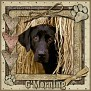 dcd-G'Morning-In The Hay