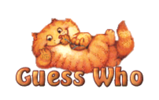 Guess Who - SpringKitty