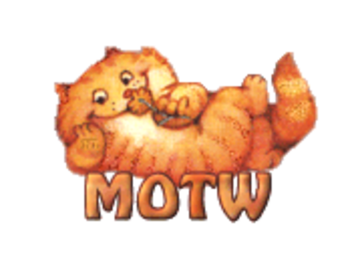 MOTW - SpringKitty