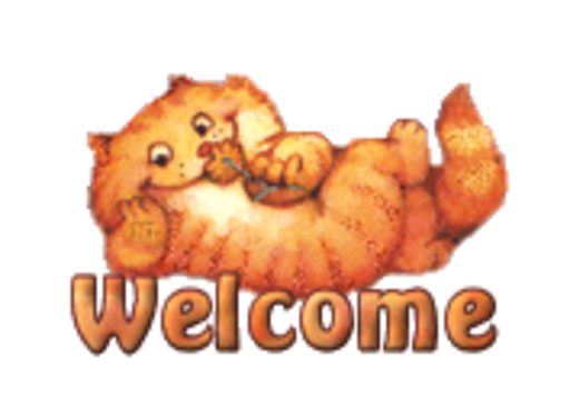 Welcome - SpringKitty
