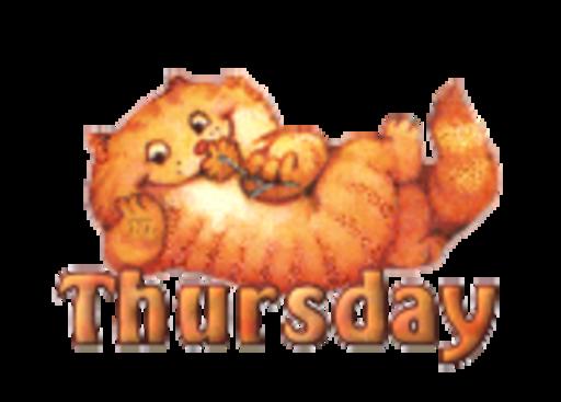 DOTW Thursday - SpringKitty