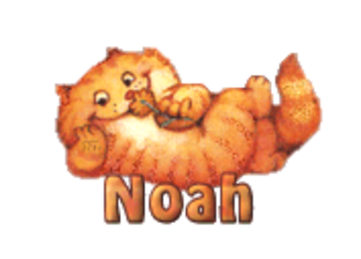 Noah - SpringKitty