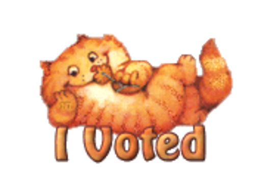 I Voted - SpringKitty