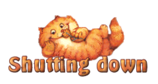 Shutting down - SpringKitty