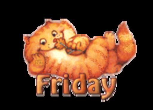 DOTW Friday - SpringKitty