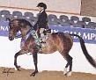 TAL DARK KRYSTAL(Neposzar+ x TamarKrystalKisz by Kiszmet)  1997 bay mare