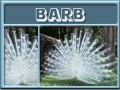 barb-gailz0304-albino peacock.jpg