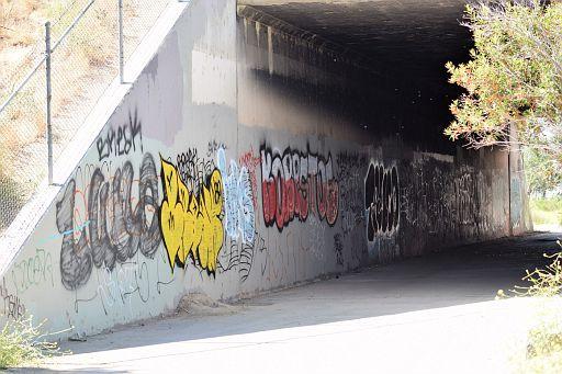 DSC 0914