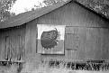 19870100-pepsi barn.jpg