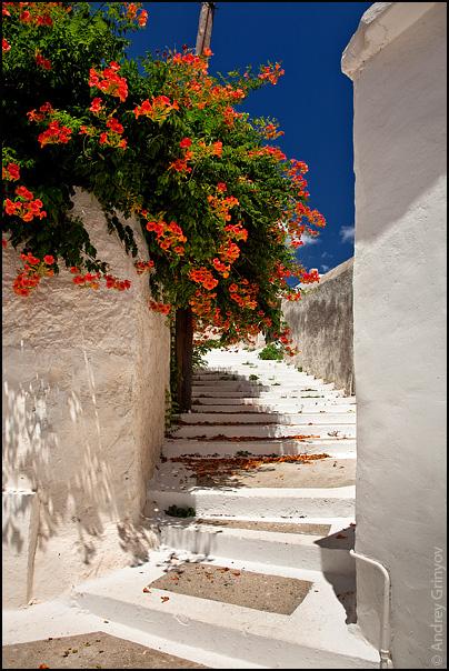 http://images110.fotki.com/v1539/photos/1/880231/7650112/017-vi.jpg