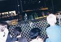 Monster Trucks 1990 O 623