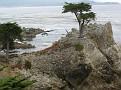 Monterey Trip Aug07 364.jpg
