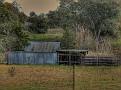 Mumbil Farm 003