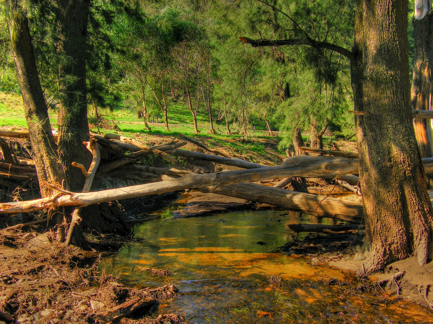 Flood damage along the Wombelong Creek 009