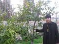 15 06 Gethsemane (35)