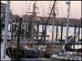 along the docks