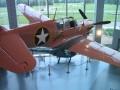 Air Zoo 2006 67
