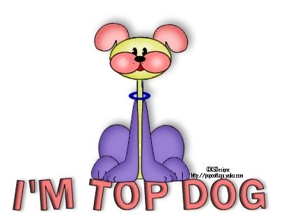 Top Dog KSDTopDogOnTop1-vi