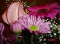 my birthday flowers 020