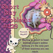 Short Guy Problems