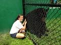 Josh the American Black Bear with Laura Wyatt Flamingo Gardens