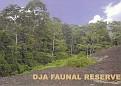 1987 DJA FAUNAL RESERVE
