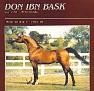 Don Ibn Bask 115351 74bs Bask DonnaBeaudette