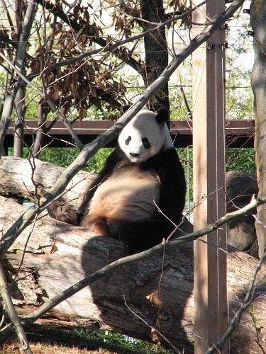 061125 Zoo 1056