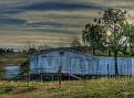 Mumbil Shearing shed 001