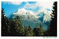 BRITISH COLUMBIA - Mt Arrowsmith