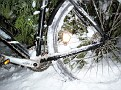 WinterCrosser