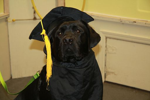 12-11-17-Graduation-M1 (7)