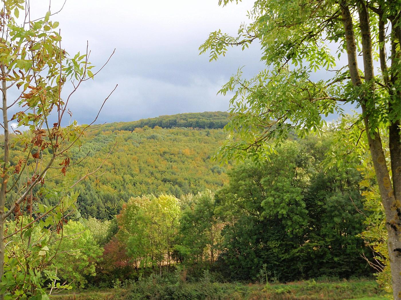 Herbstsonne im Weserbergland