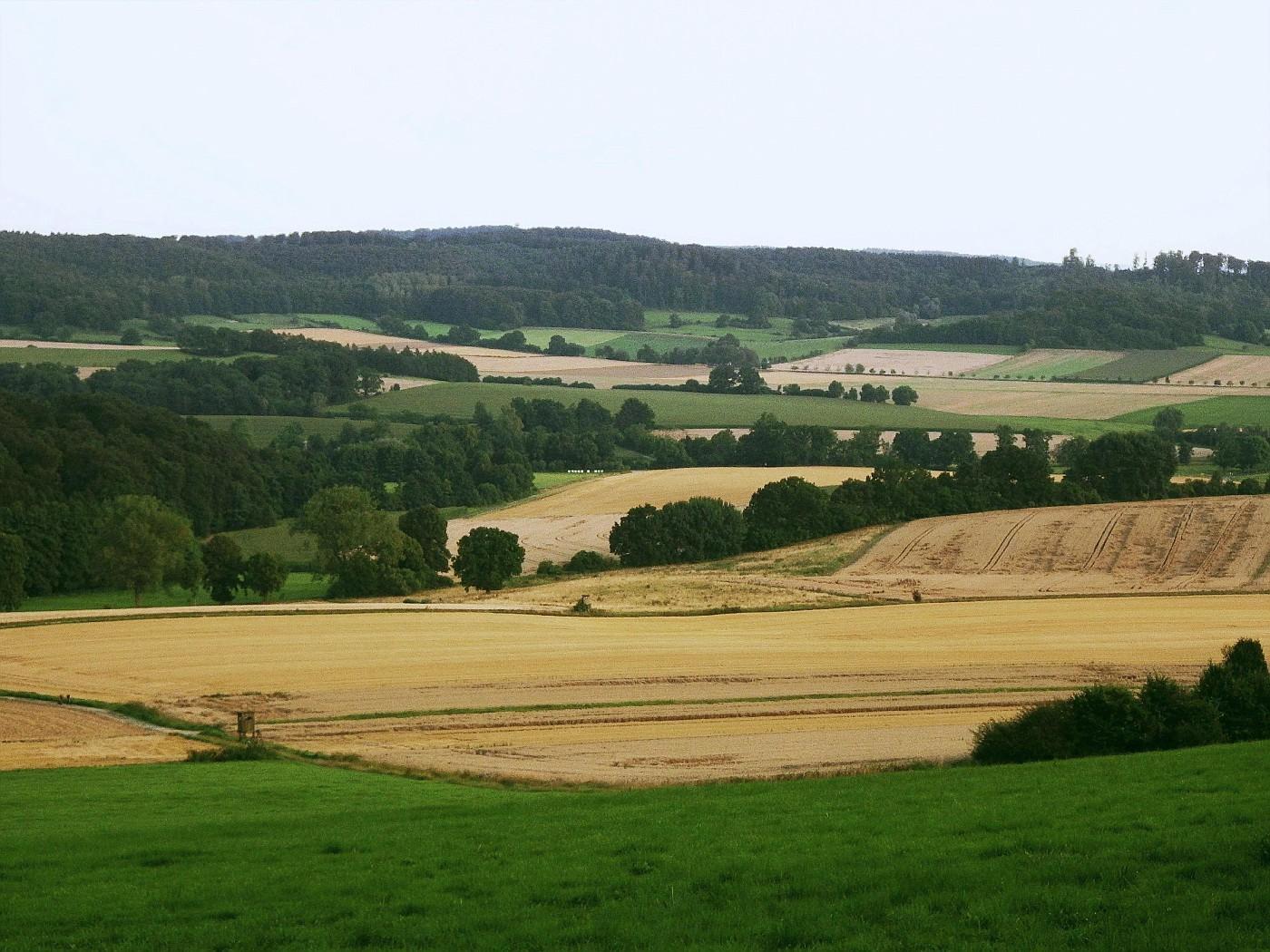 Kollerbeck