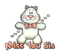 Miss You Sis - HuggingKitten NL16