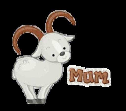 Mum - BighornSheep
