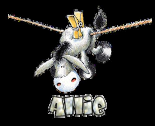 Allie - DunkeyOnline
