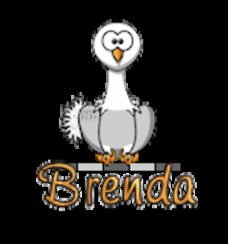 Brenda - OstrichWithBlinkie