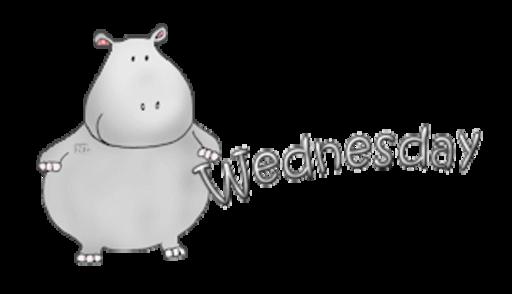DOTW Wednesday - CuteHippo2018