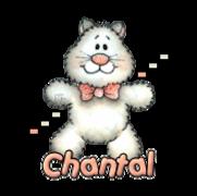 Chantal - HuggingKitten NL16