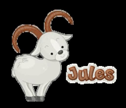 Jules - BighornSheep