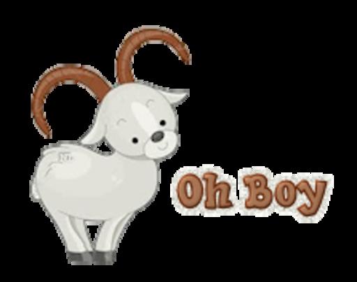 Oh Boy - BighornSheep